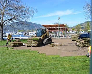 Construction workers lay out new turf around the future entrance point to Kelowna's new downtown pier.