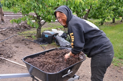 Soil is being prepped to plant flowers with natural pest-deterring chemicals to protect vegetables growing in the gardens at Gatzke Orchards.
