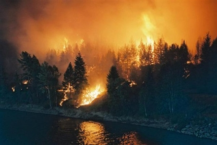 The McLure forest fire forced 3,800 people out their homes and destroyed 75 homes and 9 business in July of 2003.