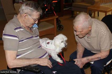 Angelo the therapy dog meets two friends on Monday at the Trinity Care Centre.
