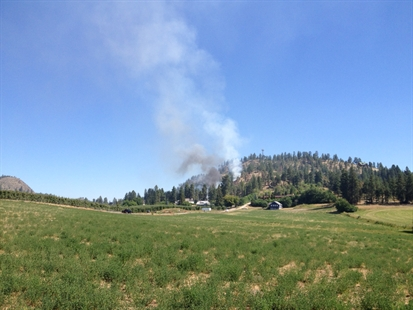 The fire is burning on a hill on Scenic Road between Glenmore and Brenda Roads.