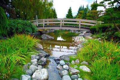 Kasugai gardens to close for winter infonews for Koi pond kelowna