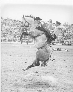 Canada S Most Revered Cowboy Receives High Honour 11 Years