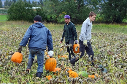 Pick out a fresh pumpkin with the help of a Blazers hockey player or get one already picked for you at the farmer's market this weekend.