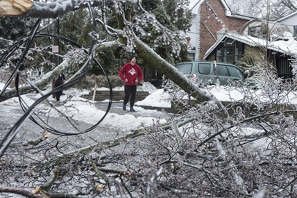 A resident surveys the damage after power lines came down across the street in Toronto's east end on Sunday, December 22, 2013.