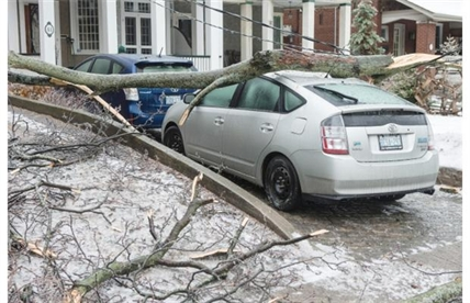 A branch lies across a car after power lines and tree limbs came down in Toronto's east end on Sunday, December 22, 2013.