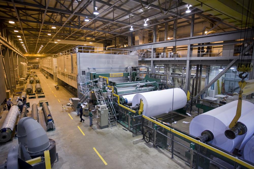 Term paper mill university website canada