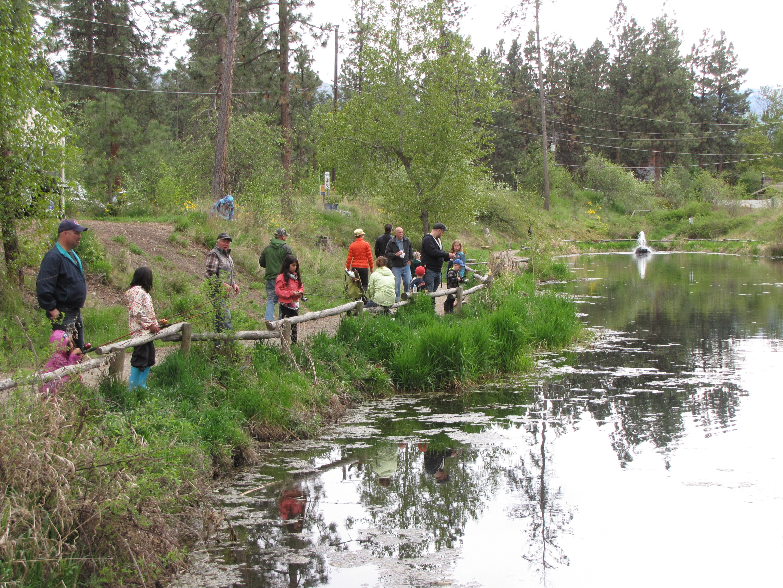 High water postpones go fish program in west kelowna for Koi pond kelowna